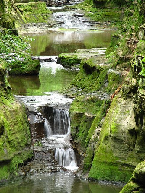 Pewit's Nest - Baraboo Wisconsin. Wonderfully cold water with deep pools to jump into    by ET's Photo Home, via Flickr