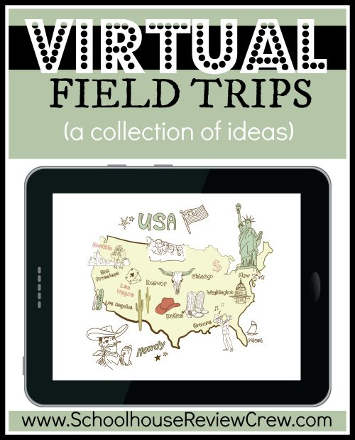 the virtual field trips essay