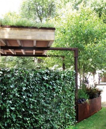 Hiding the carport from the side with an wall of ivy.
