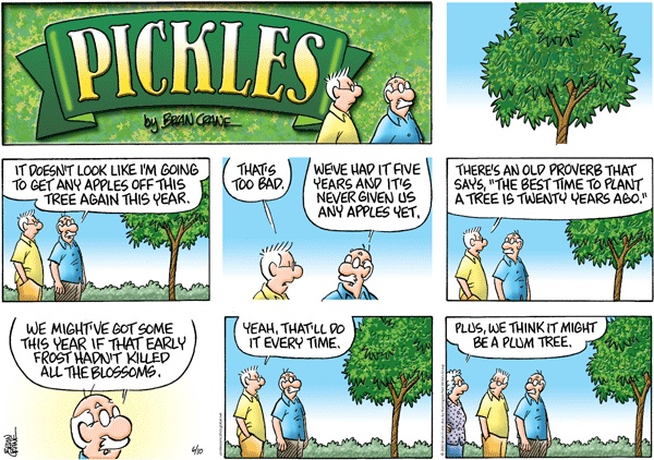 "Pickles comic strip. This reminds me of some school reform schemes, like merit pay.  They've never been shown to work, and never will.  But that doesn't seem to stop the reformers from expecting to see ""apples."""