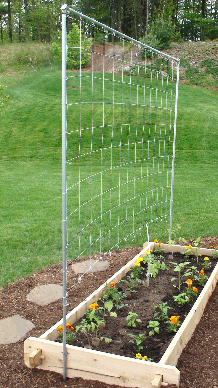 How to build your own simple trellis for a tomato and vegetable garden - Building trellises property ...