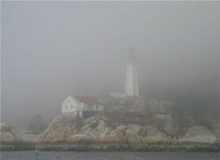 essay on fog by carl sandburg Carl sandburg was born in galesburg, illinois, on january 6, 1878 his parents, august and clara johnson, had emigrated to america from the north of sweden.