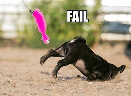 Pug Fail