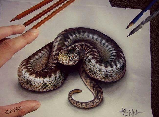 3d snake | Thats Inter...