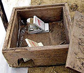 Vole trap gardening flowers pinterest - Volle trap ...