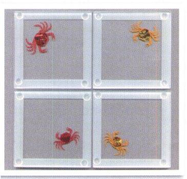Pin by catherine smerglia mowrer on vow renewal pinterest - Smashing glass coasters ...