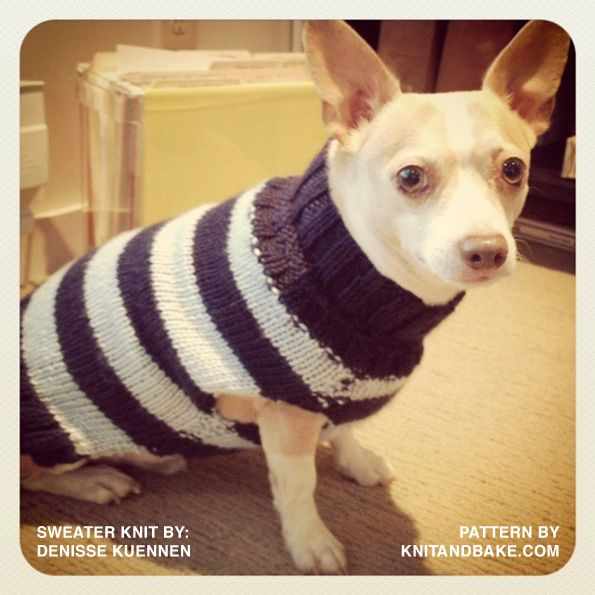 Knitting Patterns For Extra Small Dogs : Small Dog Knit Sweater Patterns Free Dog Breeds Picture