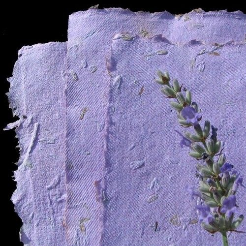 fatinia:  handmade paper with lavender flowers and seeds