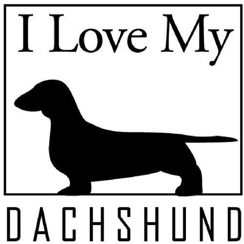 I Love Dachshunds I love my dachshund   ...