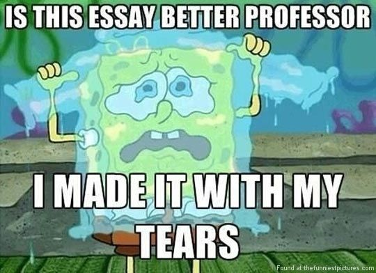 My School Essay On