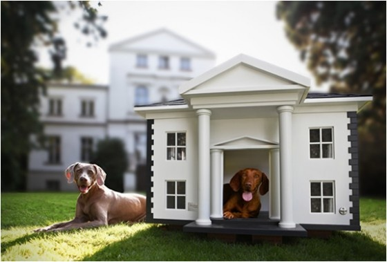 Cute dog house my grizzly pinterest