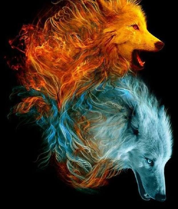 Wolves Element... | Wolf | Pinterest