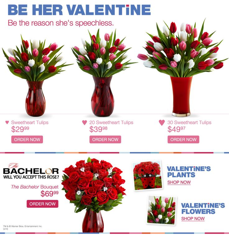 best proflowers coupon