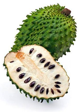 Guanabana; tropical fruit; soursop | For Drawing | Pinterest
