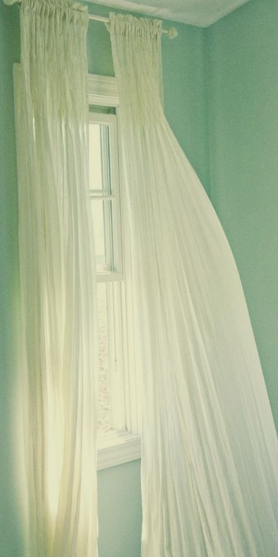 Sheer curtains in a green room