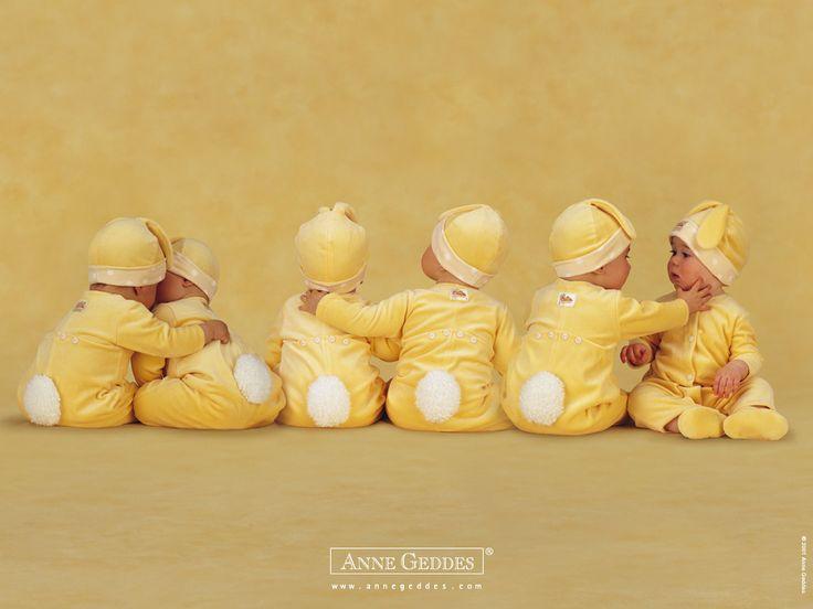 yellow bunny babies