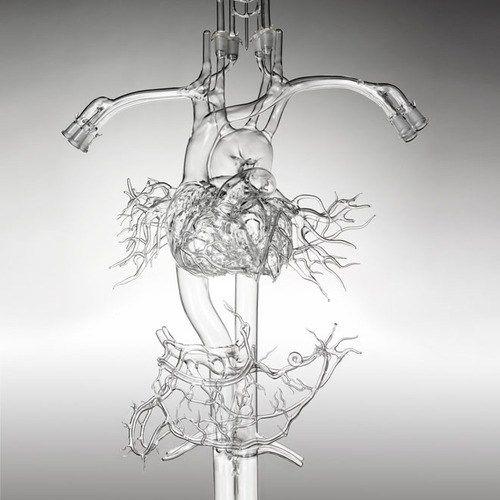 Glass Arteries