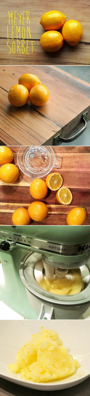 meyer lemon sorbet   Favorite Recipes   Pinterest
