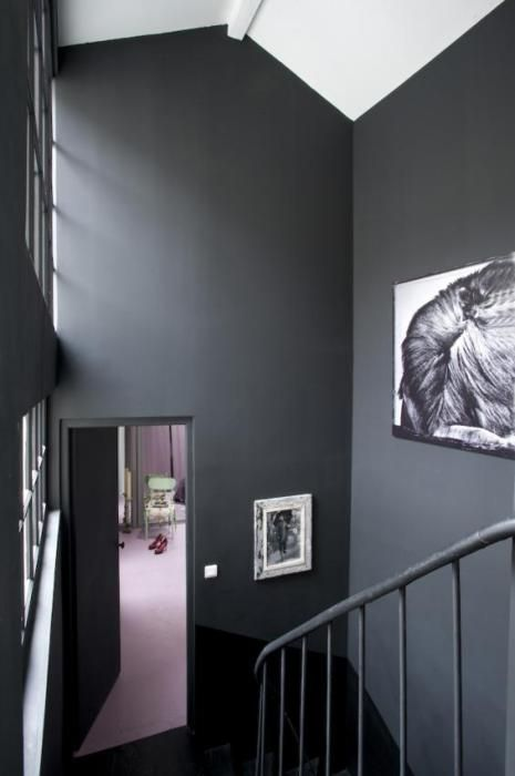 CharcoalGreyWallsContrastWithColorDreamHome