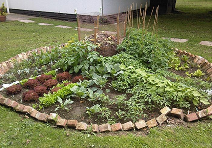Keyhole garden a patch of soil some seeds joy for Keyhole garden designs