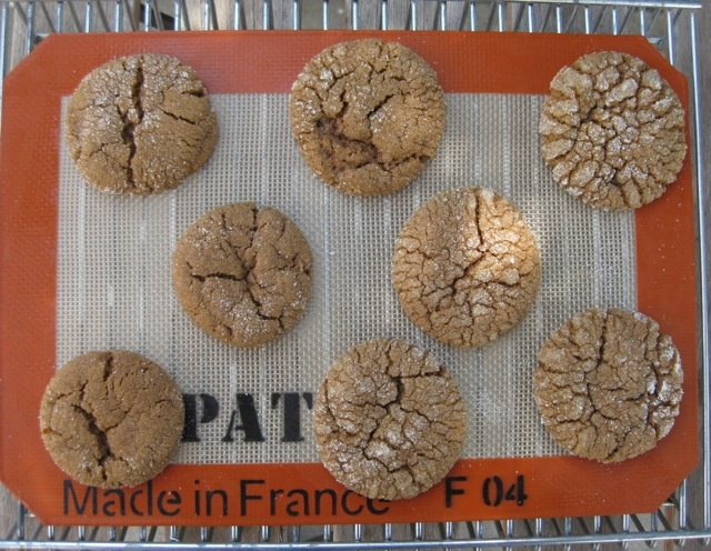 Solar Spicy Molasses Cookies [recipe] | sun oven | Pinterest