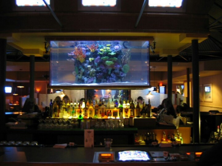 Fish tank tv show tv series tanked create outlandish for Fish tank show