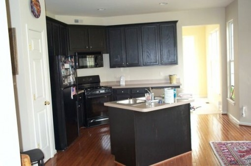 small black kitchen  Google Search  Kitchen  Pinterest