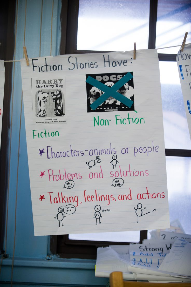 fiction vs nonfiction essay