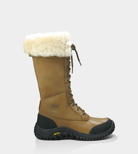 ugg australia uk jobs uggs boots on sale 60% off pictures of dogs