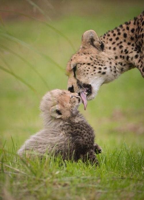 just a good morning kiss...