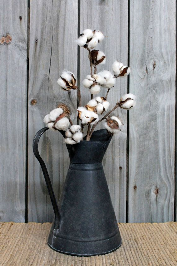 Natural Cotton Bolls Primitive Cotton Bolls by FloralsFromHome