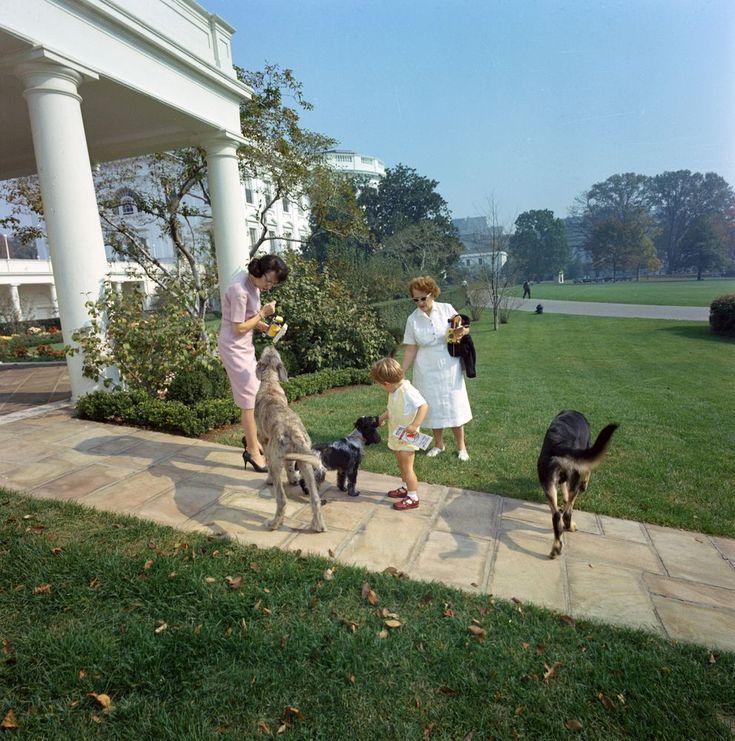 O μικρός  με τους προεδρικούς  σκύλους...
