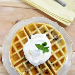 Gluten Free Blueberry Waffles   Gluten Free --Breads   Pinterest