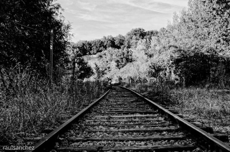 Via de ferrocarril fotografias blanco y negro pinterest for Laminas blanco y negro