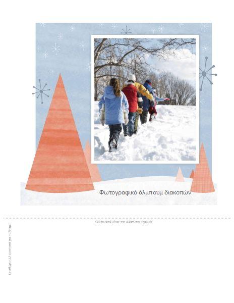 Άλμπουμ φωτογραφιών από χειμερινές