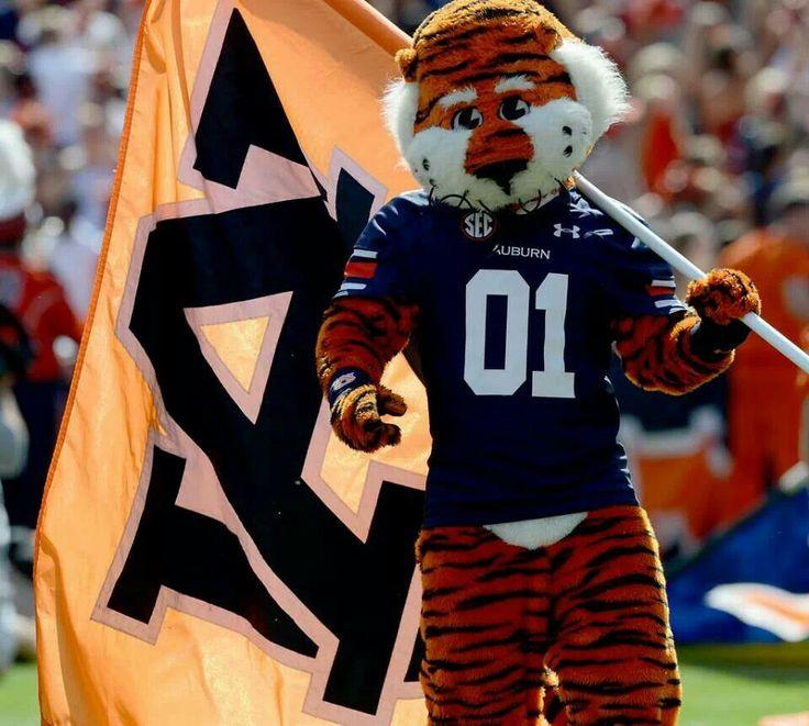 Ucsd Mascot Aubie! | Auburn | Pint...