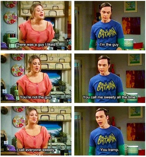 you tramp (penny and sheldon, the big bang theory)