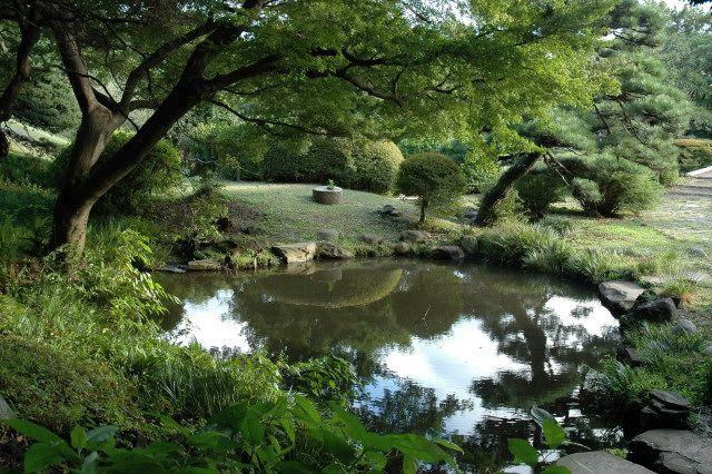 Beautiful Pond Ponds Pinterest