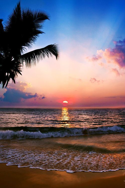 Sunset on the Tropical Island