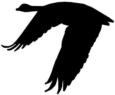 Vinyl Goose | Silhouette CAMEO Ideas | Pinterest
