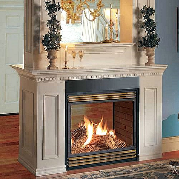 Napoleon vent free see thru fireplace fancy fireplaces for See thru fireplaces