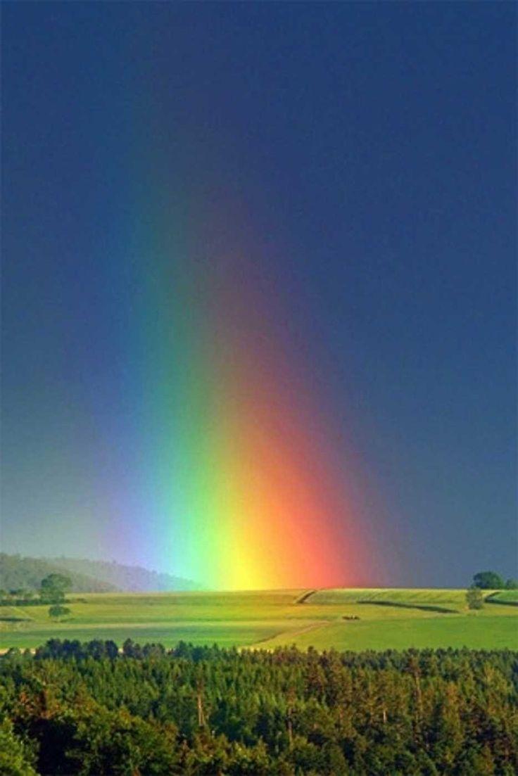 rainbow nature | Arcoiris | Pinterest