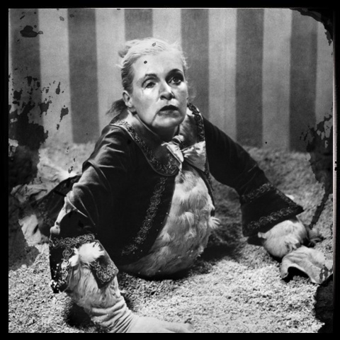 Circus Freaks | Curio City | Pinterest