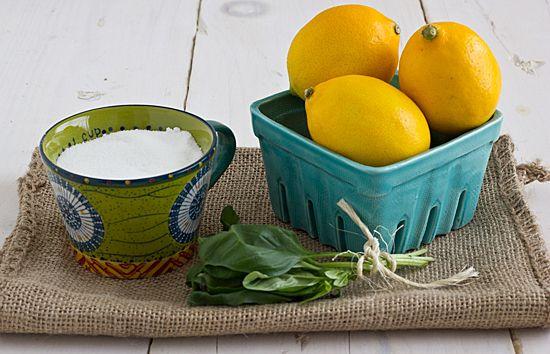 Meyer Lemon and Basil Sorbet Tested!
