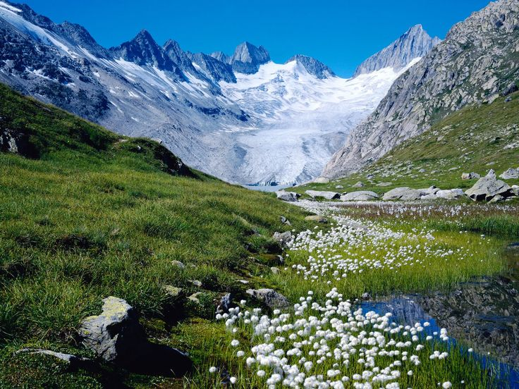I want to go climb one of these Swiss Alps