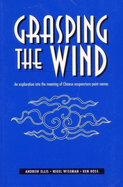 Grasping the wind the meaning of chinese acupuncture points