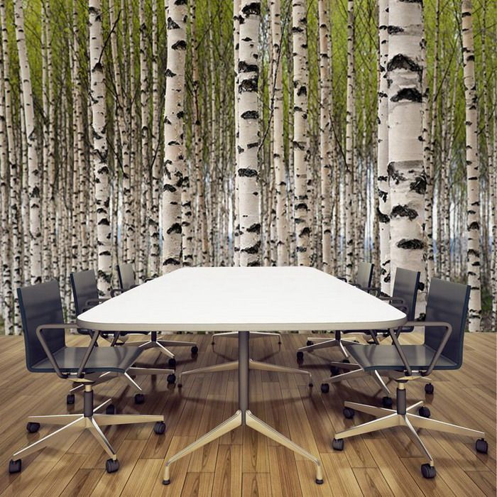 Pin by kiki bee on birchline pinterest for Birch trees wall mural