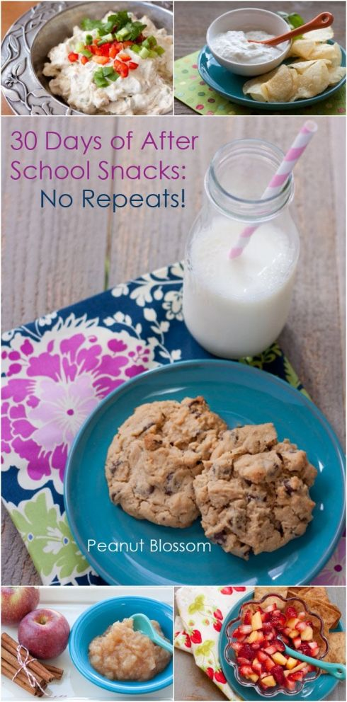 30 Days of After School Snacks: No Repeats! | Peanut Blossom: Kid friendly, picky-eater approved. Everything from running out the door energy boosters to taking time slow and being that milk & cookies mom is included!