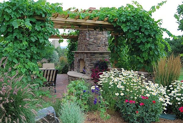 Pergola With Vines : pergola with vines  Gardening and Landscape  Pinterest