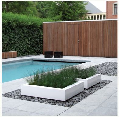 Pin by tina berry on pool landscaping ideas pinterest for Modern pool landscaping